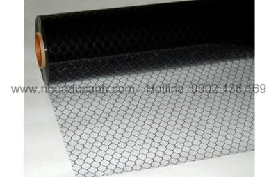 2-PVC- trong